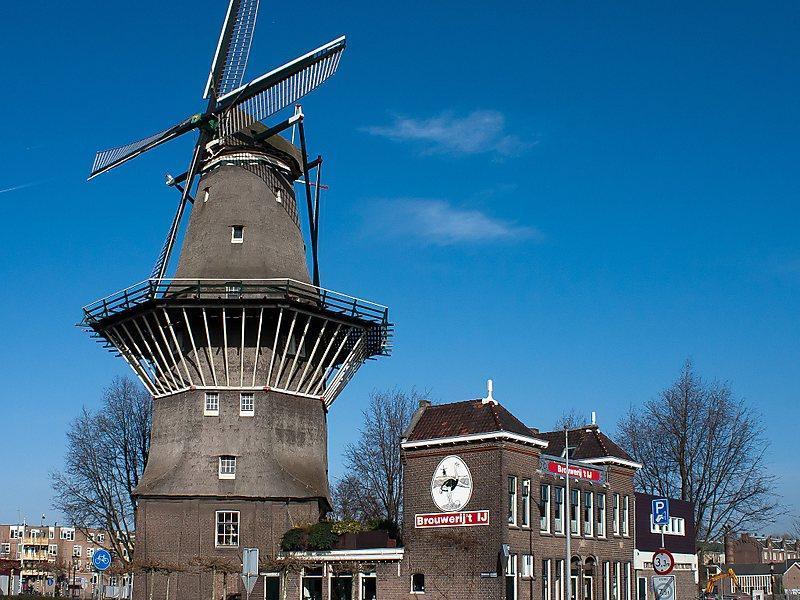 جاذبه های آمستردام: آسیاب بادی گوییر