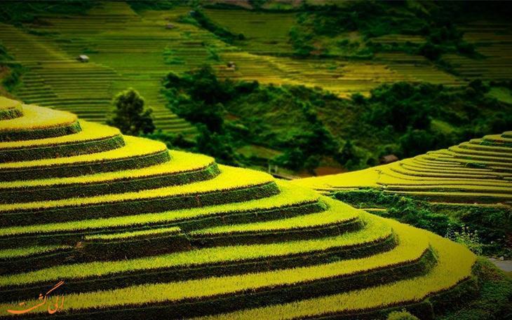 تراس های کشاورزی شگفت انگیز در سراسر دنیا