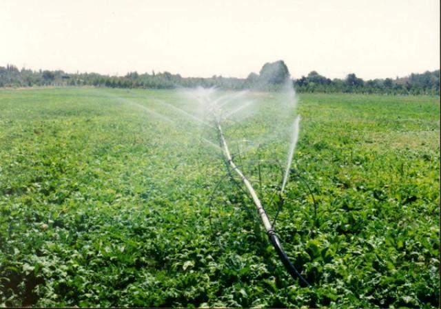 صدور سند برای 271 هکتار زمین کشاورزی در فامنین