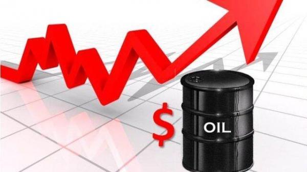 تصمیم اوپک قیمت نفت را صعودی کرد